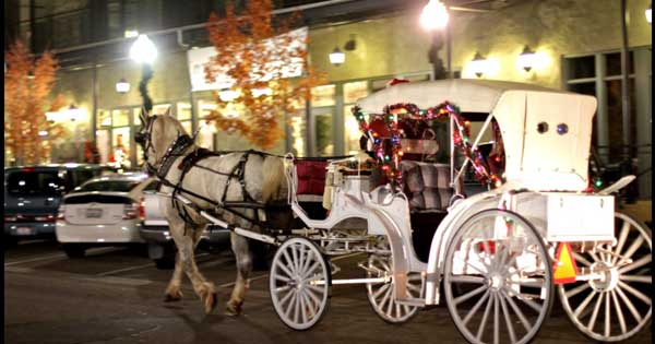 Valentines Day Carriage Rides